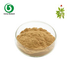 Ginsenosides 10:1 10%-80% HPLC red ginseng root extract powder
