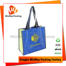 Sample Free Waterproof Plastic PP Woven Raffia Beach Bag