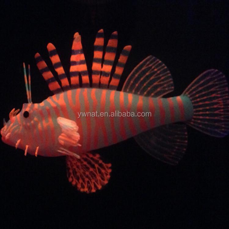 Lion fish 2014