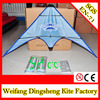 Weifang dual line sports kite stunt sports kite for advertisement