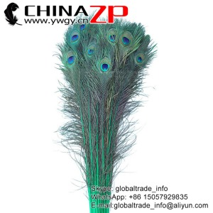 CHINAZP Wholesale Cheapest Cocktail Dress Full Eye Dyed Teal Peacock Feathers for Decoration