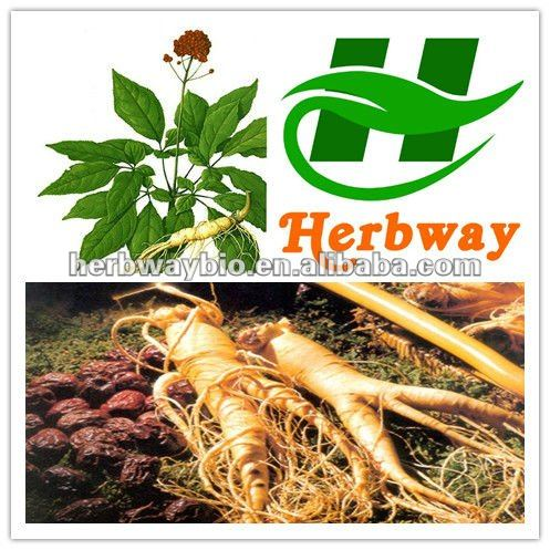 high quality Ginseng Root and leaf extract 80% panaxoside