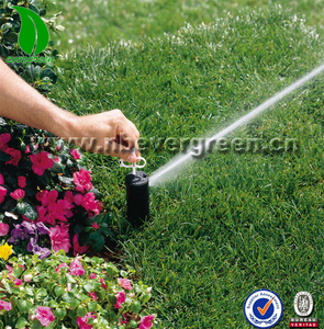 Hot sale Pop up sprinkler type spray heads similar hunter