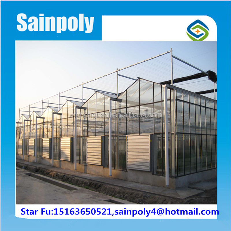 Netherlands Type Compound Greenhouse For Commercial