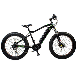 Borita High Quality Suspension Fork Lithium Battery Electric Mountain Bike