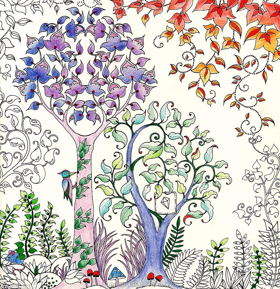 Enchanted forest coloring book youtube - Coloring Book For Adults Enchanted Forest Secret Garden Adult Coloring Book Wholesales Enchanted Forest Book