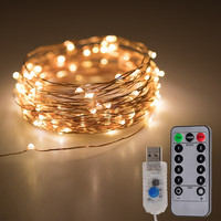 10M Seed Lid Copper Wire Waterproof Fairy String Lights Starry USB Powered Warm White Lights for Home Decoration