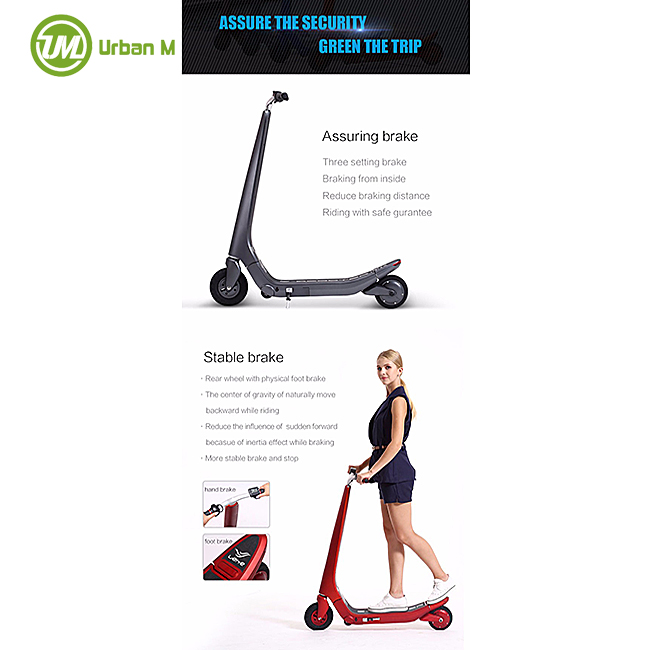 Folding E Scooter Electric Stand Up Scooter Electrical Scooter