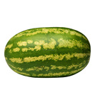 Touchhealthy supply Newly F1 Hybrid Super green Watermelon seeds for planting 10gram/bags