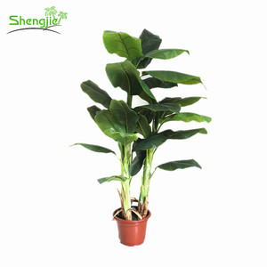 Popular style artificial indoor ornamental banana plants for office