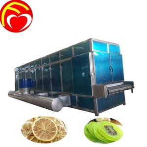 Industrial mesh belt dryer for food / fruit and vegetable dehydration