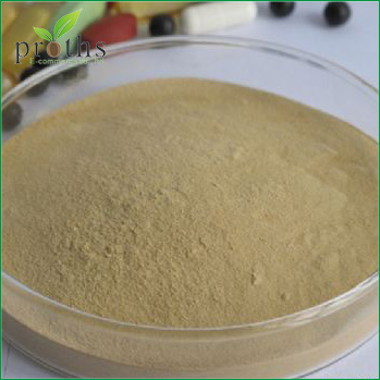 Wholesale free sample rosemary herb P.E. powder