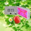 Top Power LED Grow Tent Light 300w Led Grow Panel Light