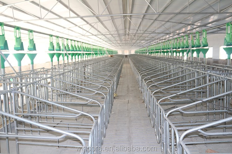 Modern Design Pig Farm Durable Hot Dip Galvanized Pig Farm
