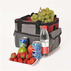 electric fishing cooler 12 liters box picnic cooler bag