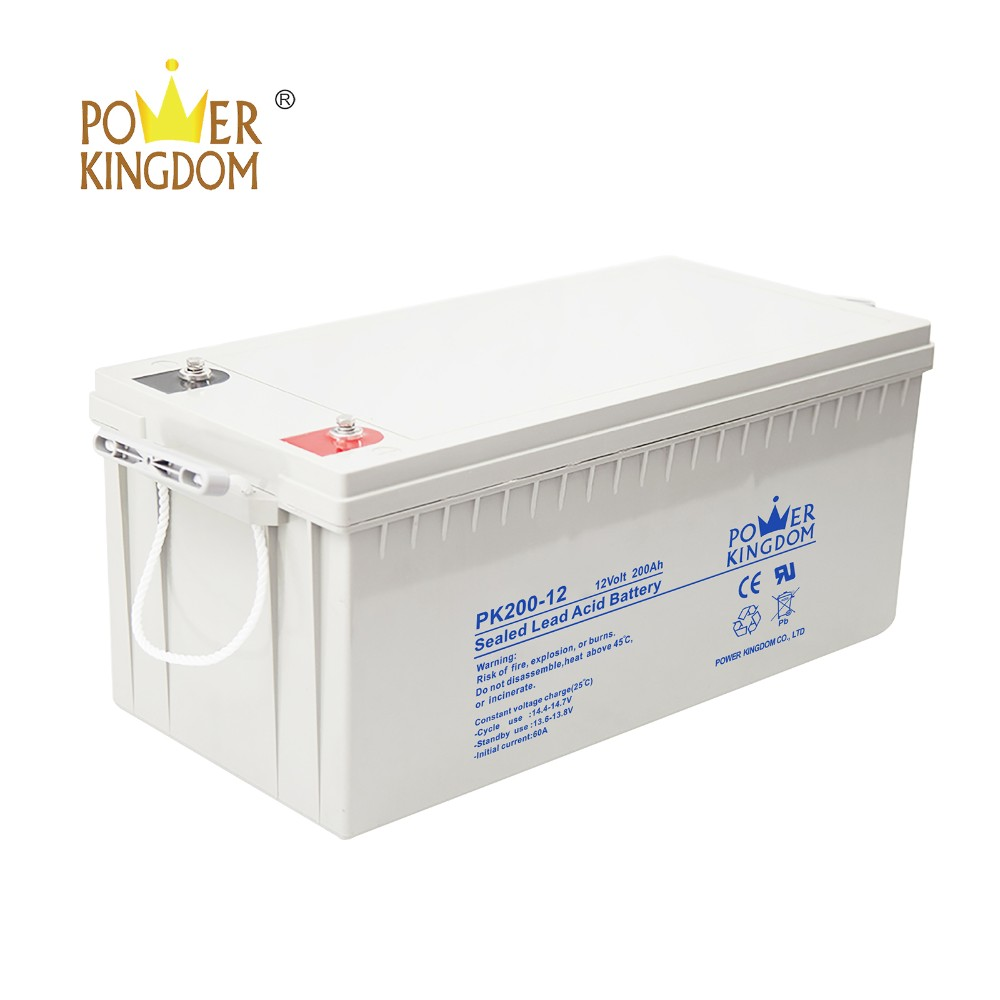 Power Kingdom 105ah agm deep cycle battery wholesale wind power systems-8
