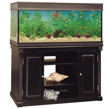 Wood Aquarium Stand 55 75 Gallon Buy Aquarium Product