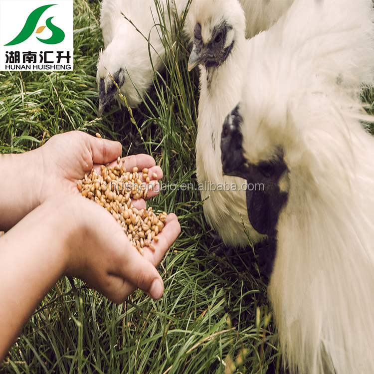 100% purity rice protein in China supplier factory manufacturer&supplier exporter and importer