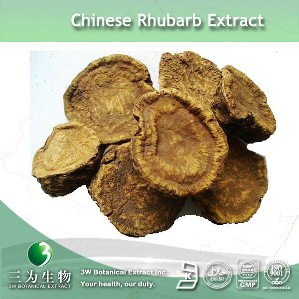 3W GMP Factory Supply Rheinic Acid Of Rheum Rhabarbarum Extract In Hot Selling