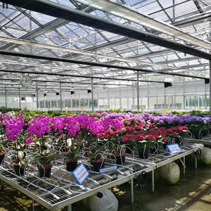 Hot Galvanised Steel Greenhouse 4x8 Grow Table