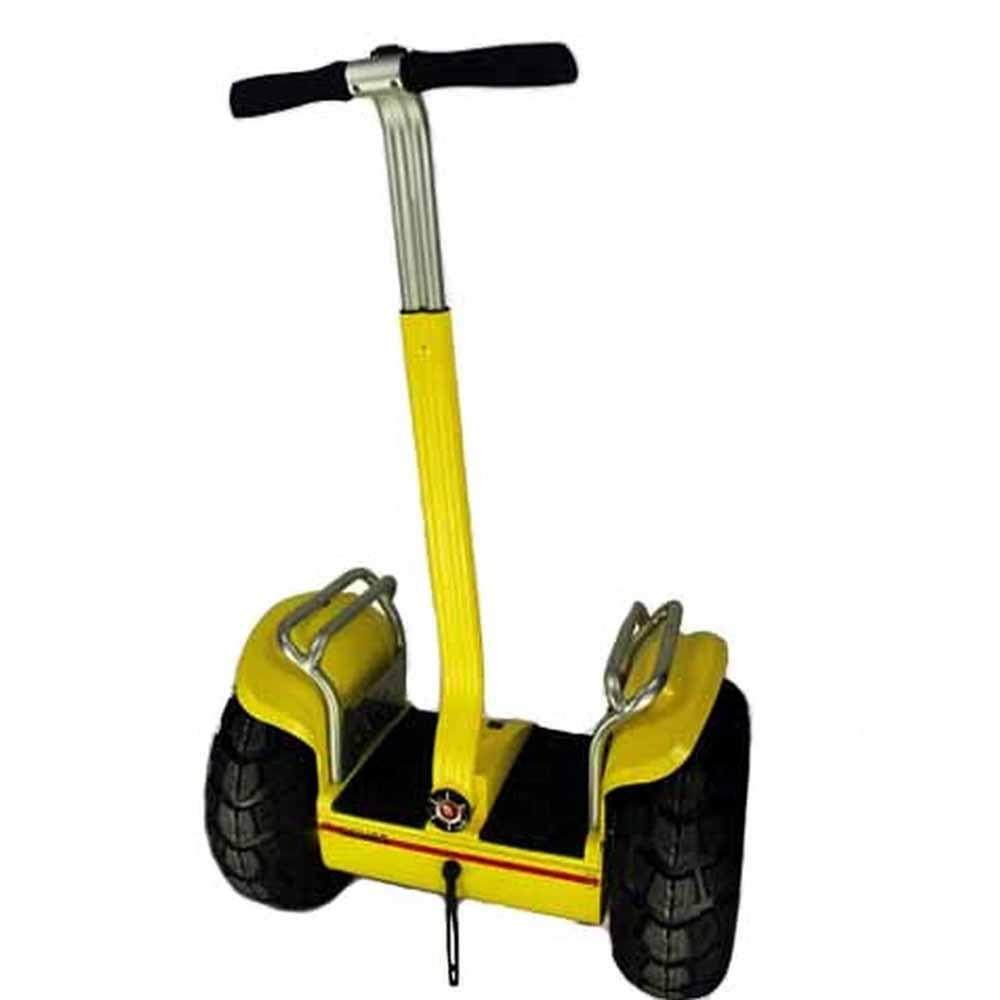 Carefully 2 Wheel Stand Up Electric Scooter For Adult