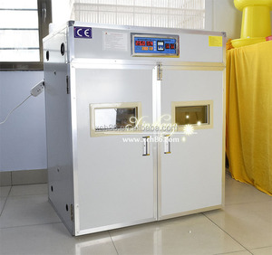 High Quality Eggs Incubator 500