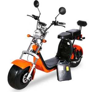 ZPARTNER 2 wheel EEC chinese adult electric scooter 1500W electric motorcycle scooter