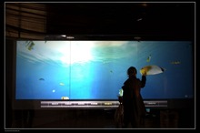Dust-Proof And Water-Proof 17 Inch Interactive Touch Foil 6 points Multi-Touch Film CE,FCC,ROHS Approved