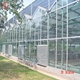 China supplier hot sell used greenhouse steel structure