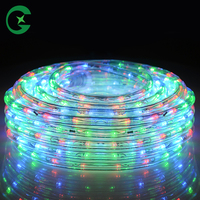 Most hot 110v Color changing Waterproof Outdoor Led strip light