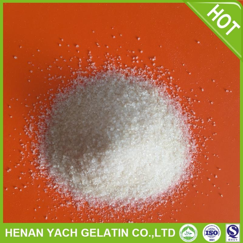 Hot selling unflavored gelatin halal with great price
