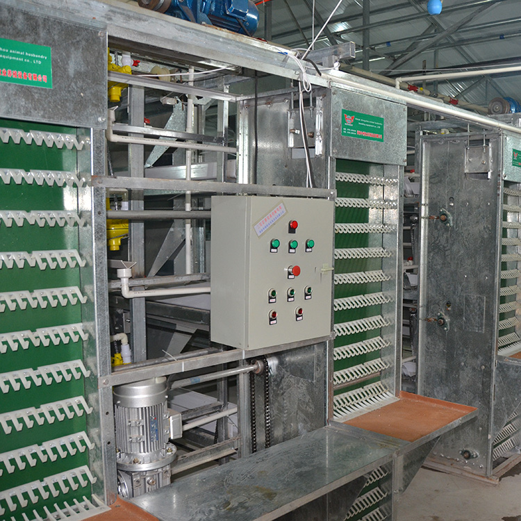 chicken cage with series of equipments automatic laddering feeding system and chicken egg collecting machine for sale
