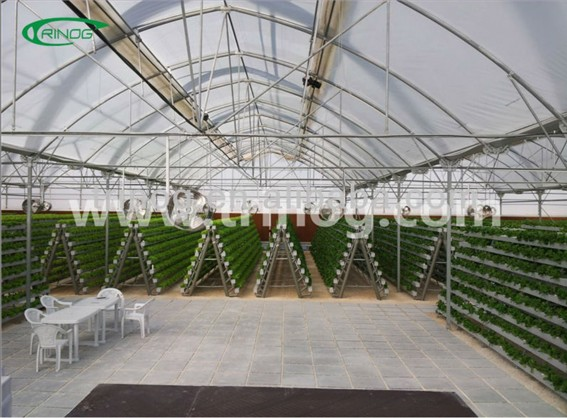 Industrial substrate nft melon complete hydroponic systems for sale