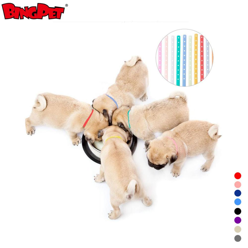 Impermeable Durable silicona Glow Pet Puppy ID Collar de perro