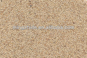 Natural sesame seeds, white sesame seeds, new crop whitish sesame seeds