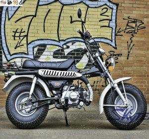SKYTEAM 125CC 4 STROKE E4 T-REX ST125-11 RV VANVAN BEACH MOTORCYCLE (EEC,  EUROIV EURO 4 EPA approved)