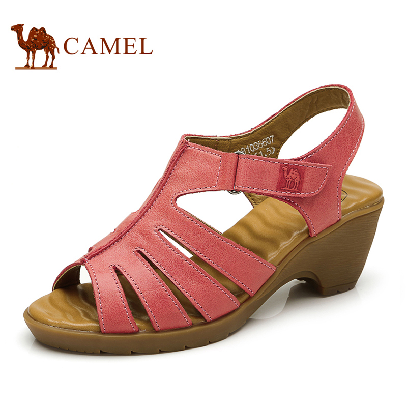 Camel Shoes Price