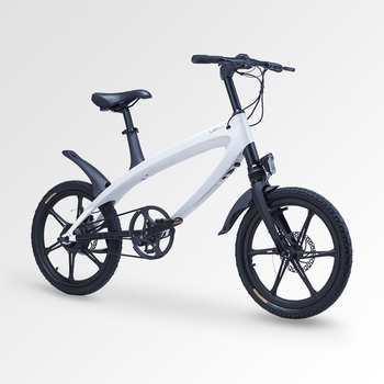 Europe Patent Ce S1 Lehe Torque Sensor Electric Bike With