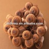 price for specification fresh shiitake mushroom in jar