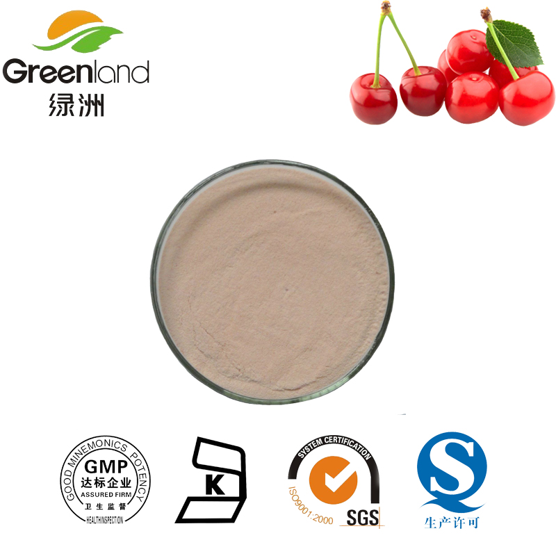 100%Natural Acerola Cherry Extract ,fruit extract