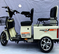 China multifunction open adult passenger/cargo three wheel 48V 600W electric tricycle