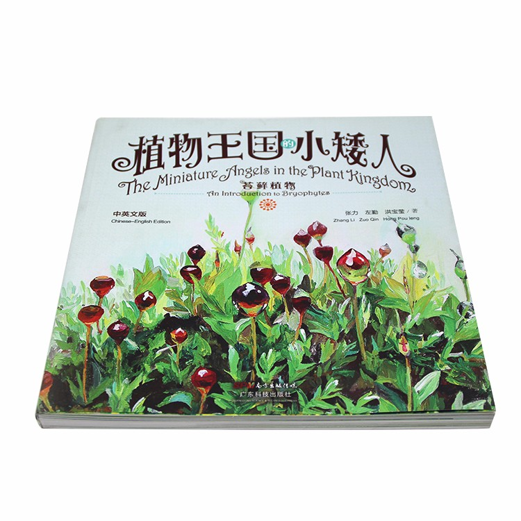 Educational offset paper softcover children story book paperback coloring custom book printing