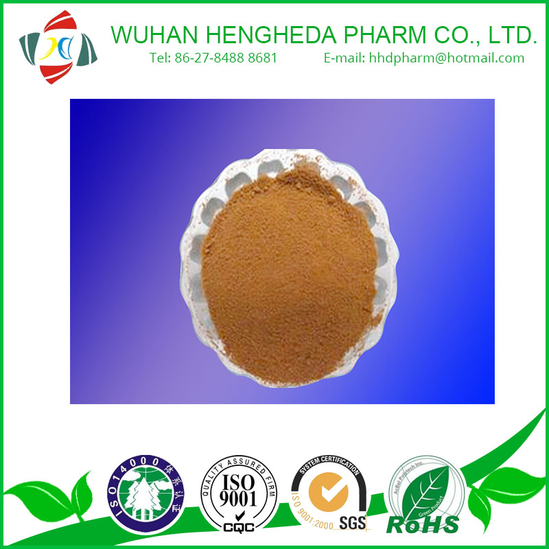 False Purslane Extract CAS:90083-07-1/ Bacopa monnieri extract powder/Natural Herbal extract/Pharmaceutica/anti-aging