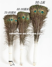 large size cheap natural color peacock feather for costume
