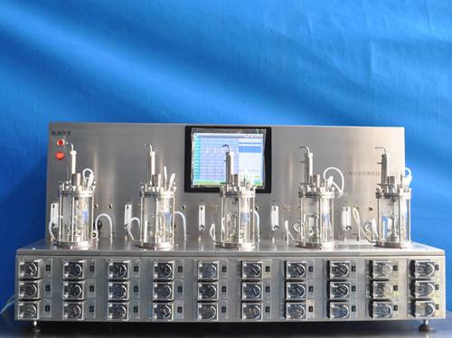 Five conjoined fermentors (glass Autoclavable)