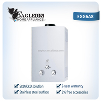 High efficient 6L stainless steel Portable Instant Flue type Gas Water heater EGG6A8