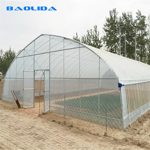 China Ventilation System Tunnel Greenhouse