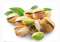 Raw Roasted pistachio nuts price