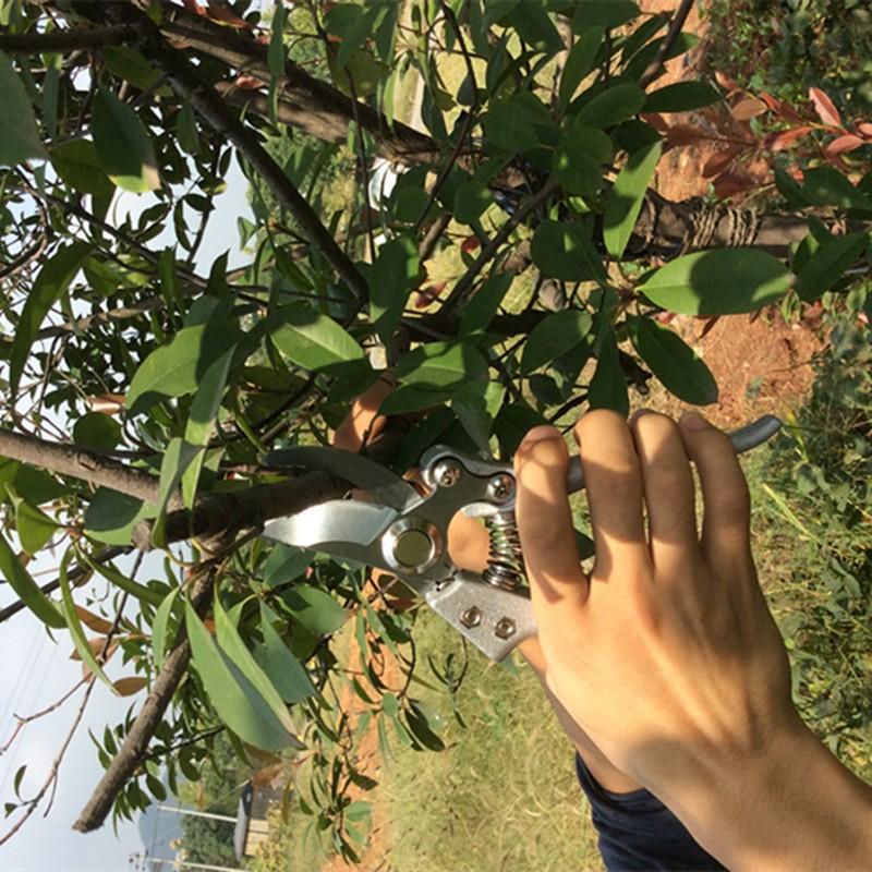 Grafting Tool High Carbon Steel Fruit Tree Pruning Shears Bonsai Pruners Garden Shears Gardening Secateurs Garden Scissors Hot
