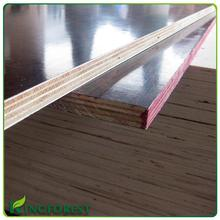 Film Faced Plywood Usa Film Faced Plywood Usa Suppliers And